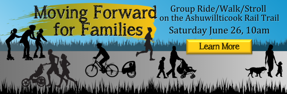 Copy of Banner – Moving Forward for Families (1)